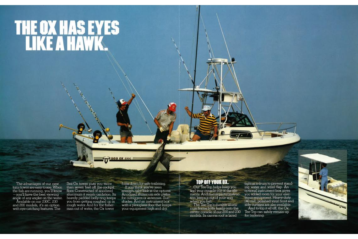 sea ox hawk eyes