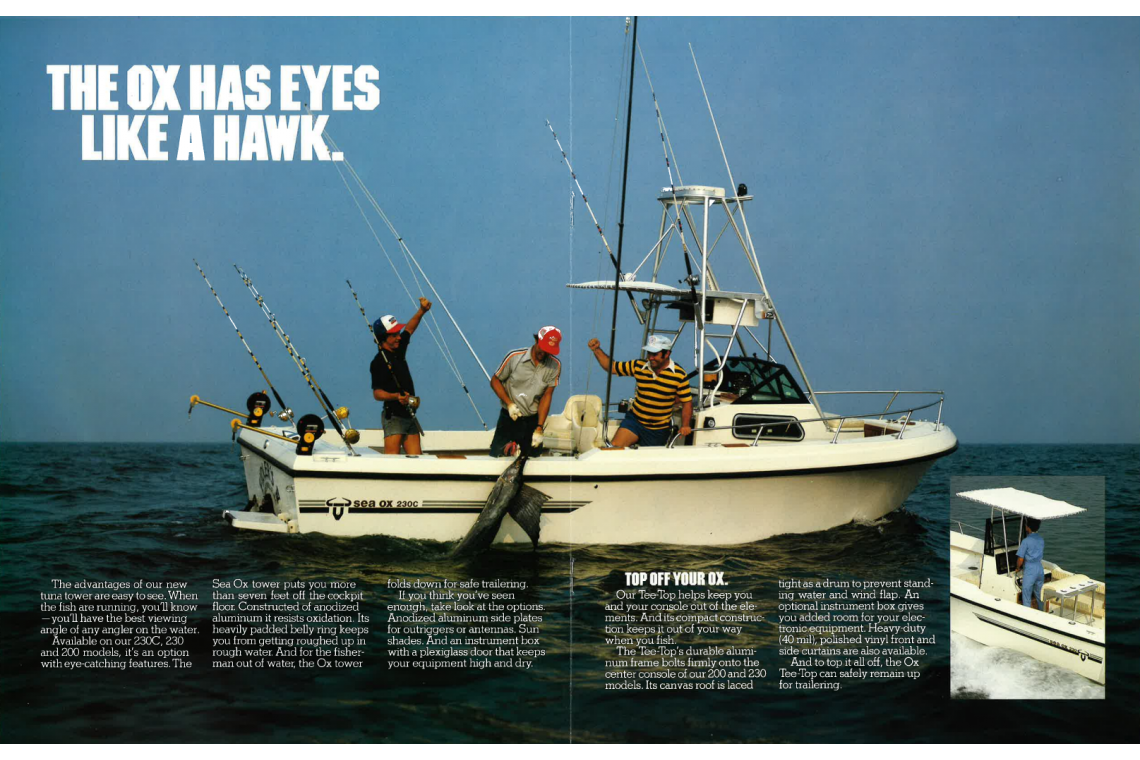 sea ox hawk eyes